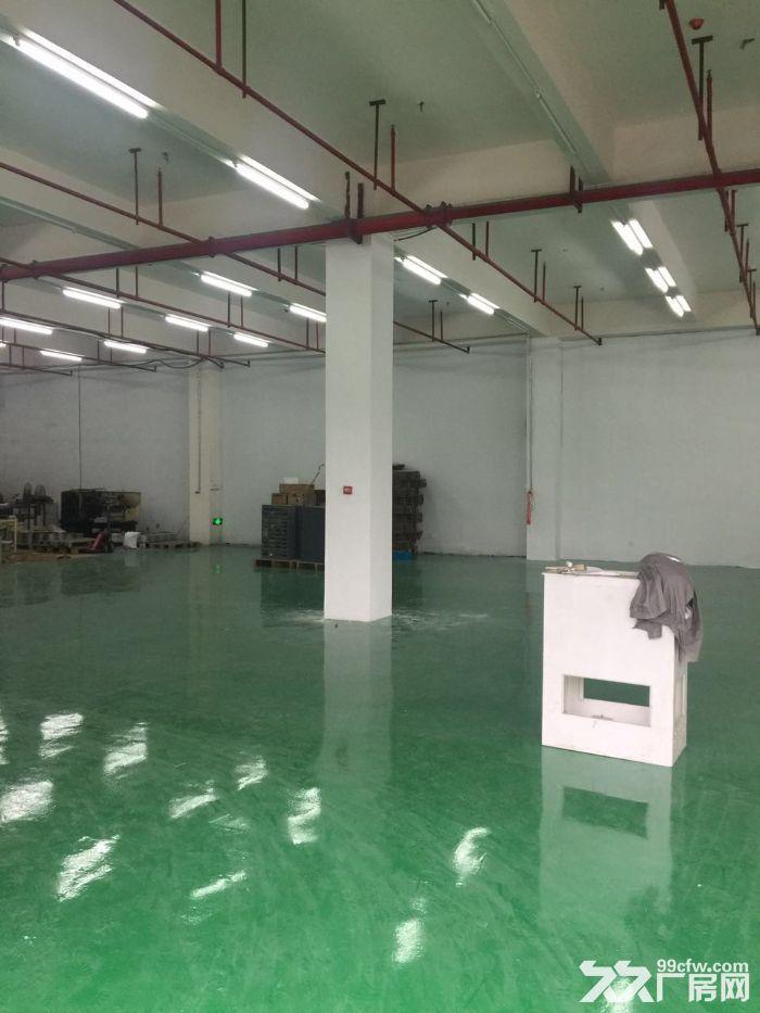 优质500平全新厂房,专用大货梯,价格优-图(1)