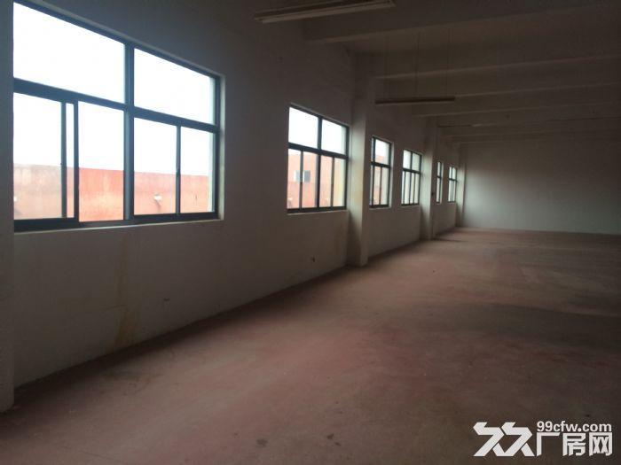 优质500平全新厂房,专用大货梯,价格优-图(2)