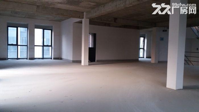 优质500平全新厂房,专用大货梯,价格优-图(4)
