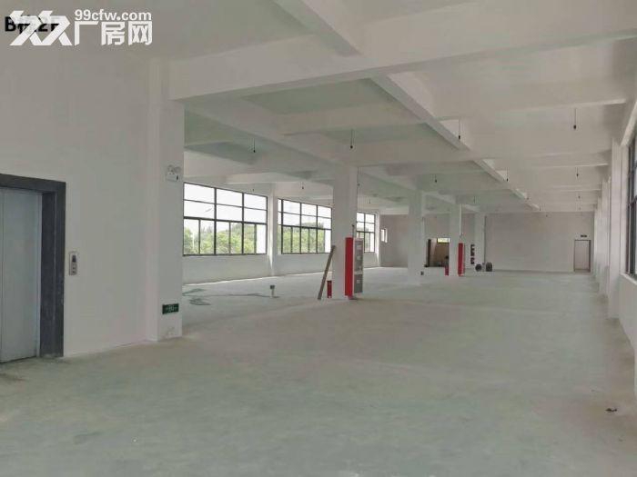 优质500平全新厂房,专用大货梯,价格优-图(5)