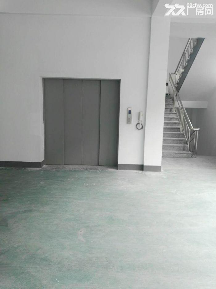 一楼1000方出租,适合仓储轻工类-图(2)