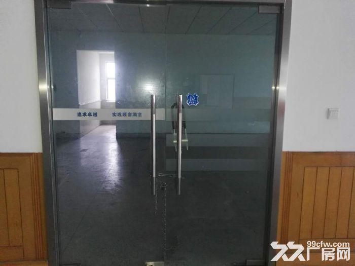 闵行春申路厂房仓库出租-图(7)