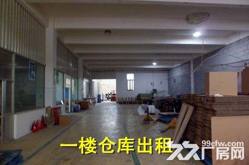 青浦练塘标准厂房仓库出租非中介-图(2)