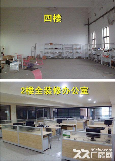 青浦练塘标准厂房仓库出租非中介-图(3)