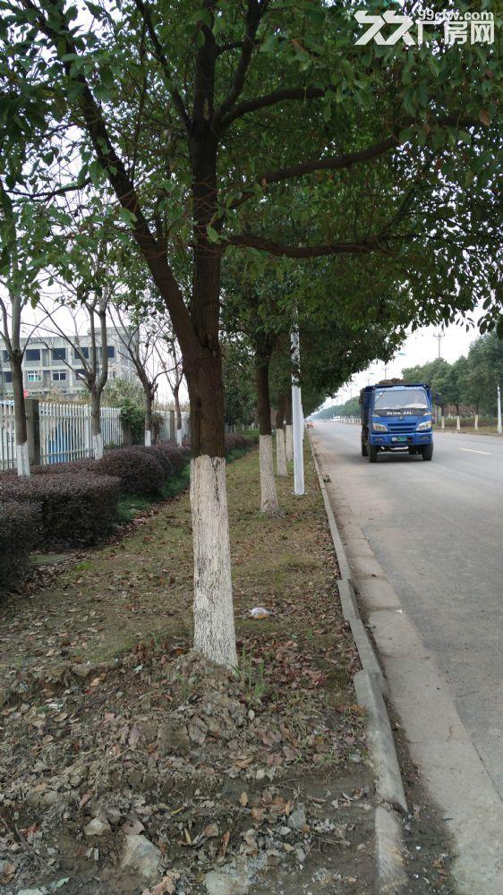 吴江开发区150亩土地及未完工建筑物-图(7)