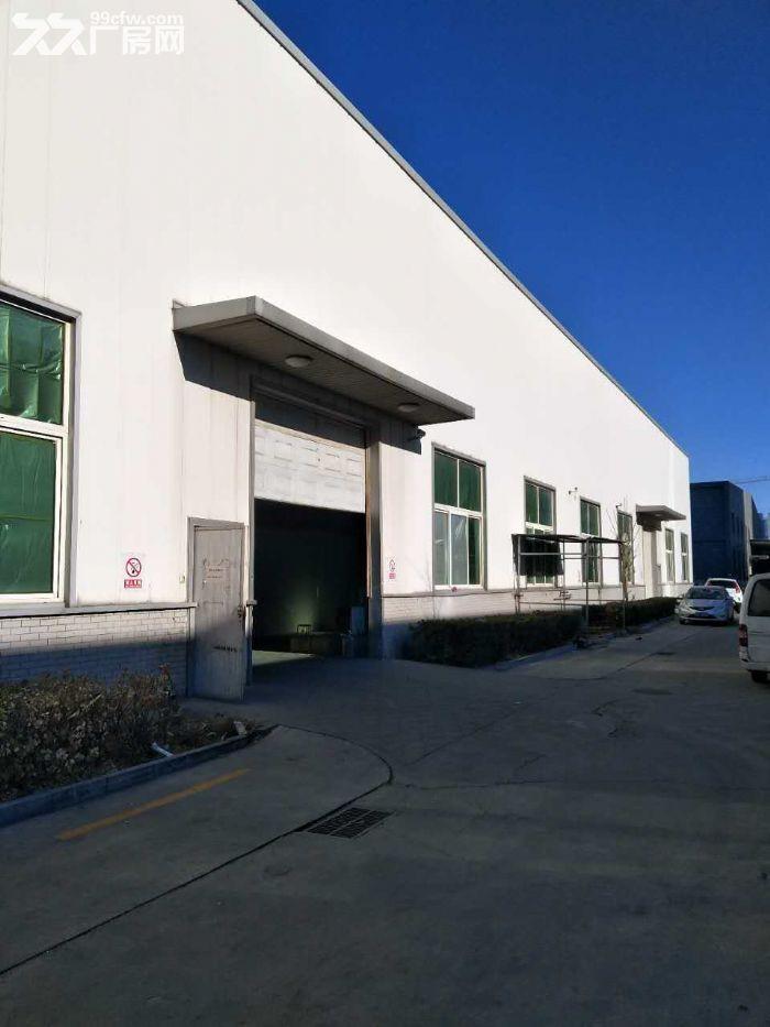 高8米生产厂房3600平米手续齐全-图(3)