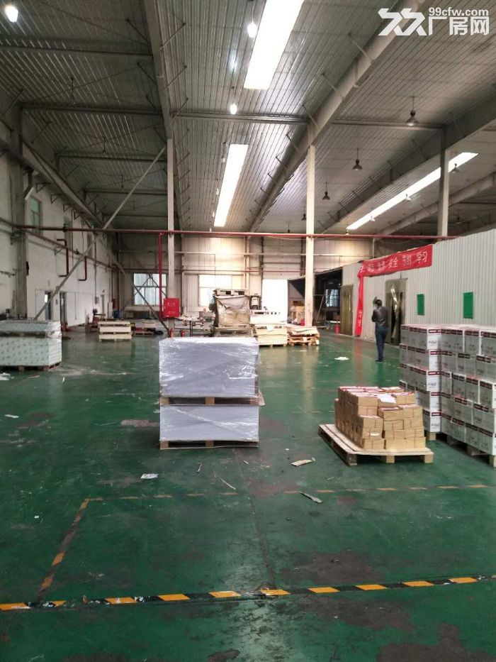 高8米生产厂房3600平米手续齐全-图(6)
