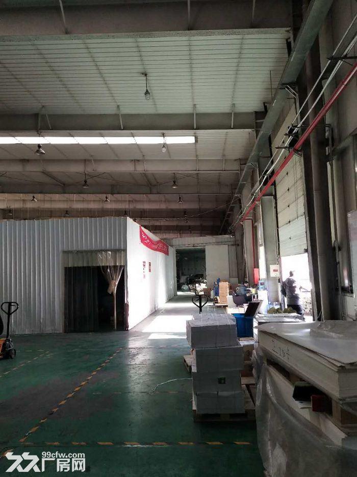 高8米生产厂房3600平米手续齐全-图(4)