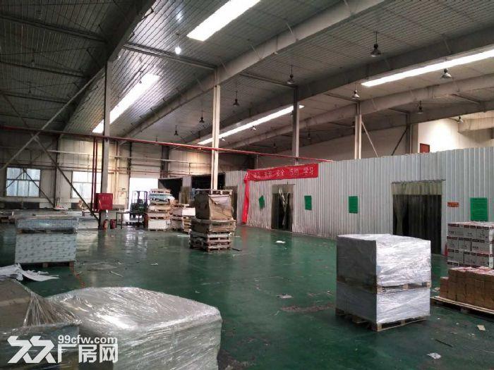 高8米生产厂房3600平米手续齐全-图(5)