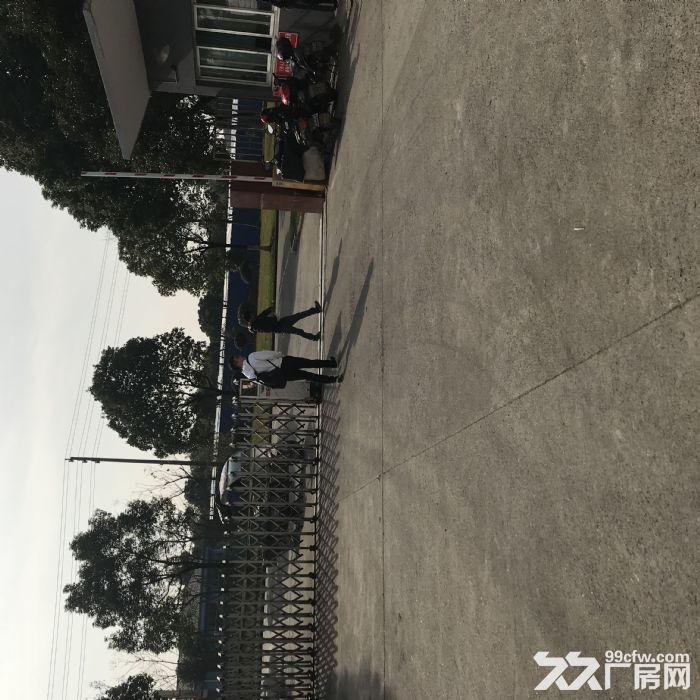 房东本人出租一楼2000平仓库,大车集装箱进出方便。-图(2)
