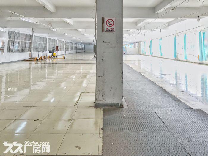 房东本人出租一楼2000平仓库,大车集装箱进出方便。-图(4)