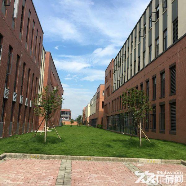 江北高新产业技术园区全新厂房租售!形象佳!-图(7)