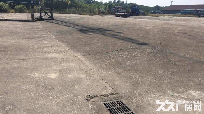 南村市新路旁25000方硬化地、水电齐全、交通便利-图(1)
