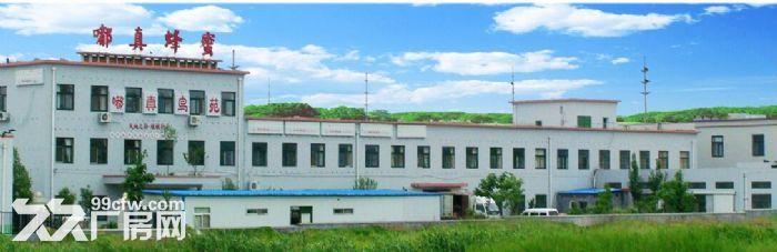 玉皇岭工业园4400平优质厂房出租-图(1)