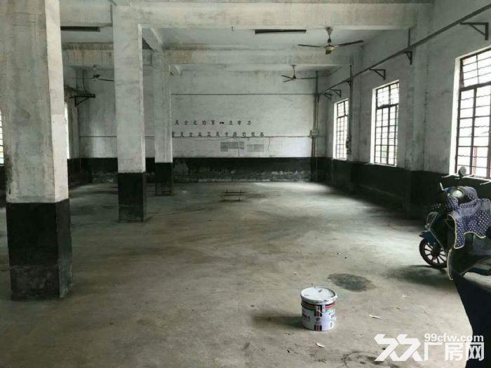 近地铁三鲁公路沿线2300平独门独院厂房仓库出租-图(2)