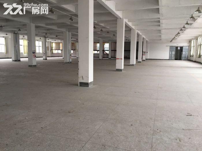 火车南站附近仓库、厂房出租-图(2)