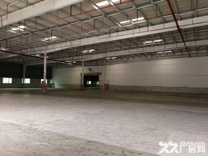 永和开发区超靓工业园33428平方厂房仓库招租-图(5)
