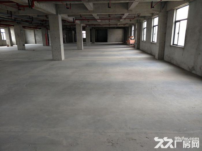 浦东自贸区厂房出租6000−−52000平方出租租金1.1−−1.6元租金-图(2)
