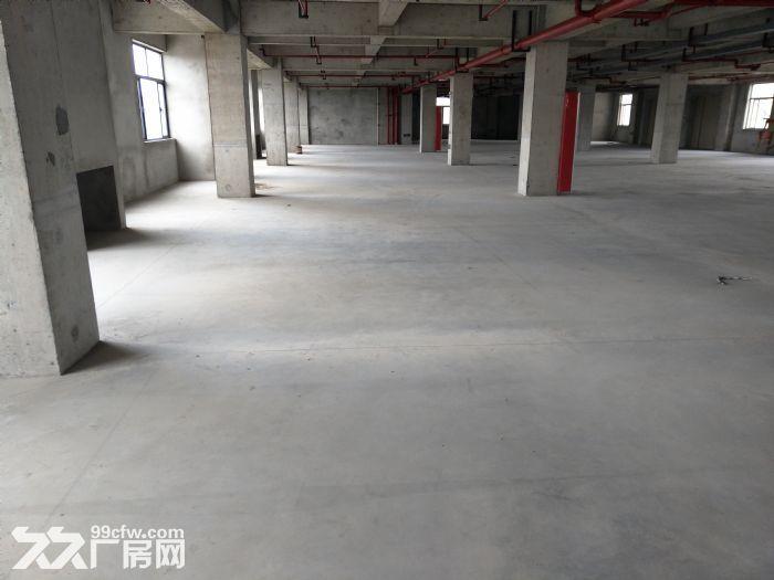 浦东自贸区厂房出租6000−−52000平方出租租金1.1−−1.6元租金-图(5)