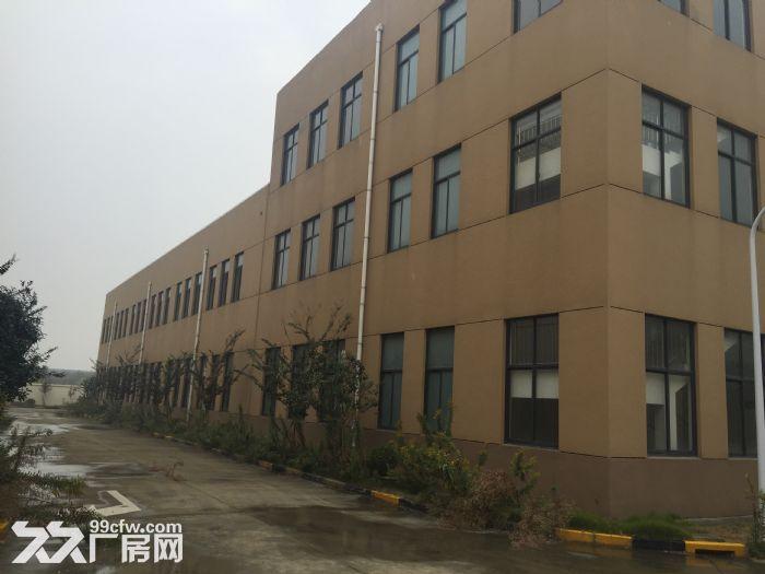 上海市金山区金山工业区全新厂房出租-图(1)