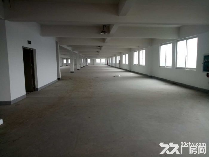 星华公路金沙江西路,稀有一楼厂房,独院大小可分割,适合做仓库,货物堆场,轻加工-图(5)