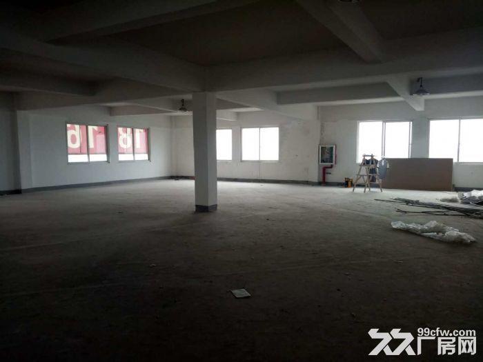 星华公路金沙江西路,稀有一楼厂房,独院大小可分割,适合做仓库,货物堆场,轻加工-图(7)