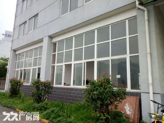 星华公路金沙江西路,稀有一楼厂房,独院大小可分割,适合做仓库,货物堆场,轻加工-图(8)