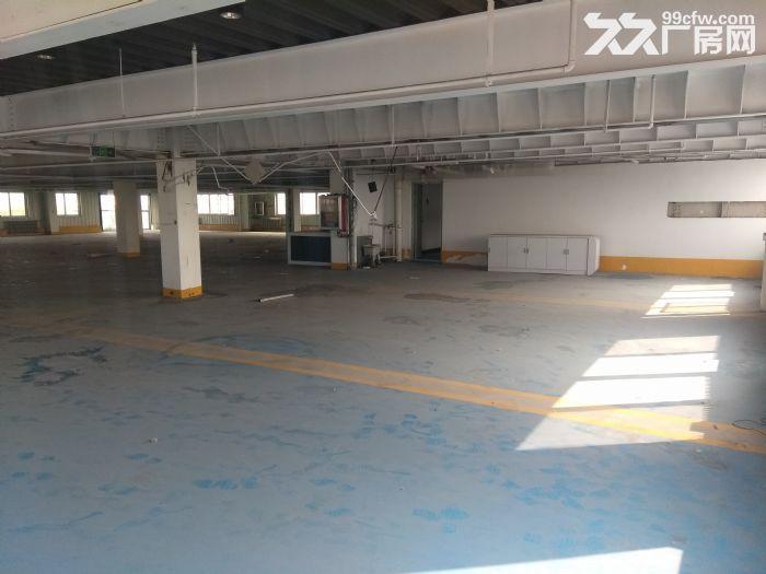 (万象免费推荐)丰润区4300平厂房大院出租-图(4)