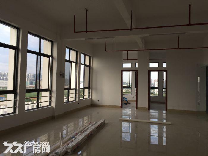 南宁市同乐大道50号小厂房小写字楼出租-图(1)