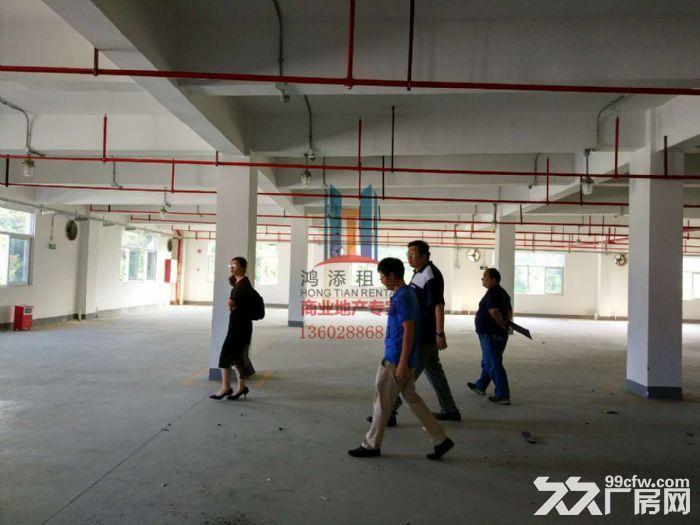 科学城800方−3000方标准厂房招租-图(3)