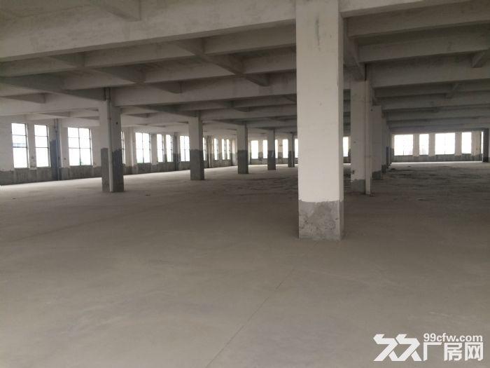 前洲18000平米独院多层厂房出租-图(1)