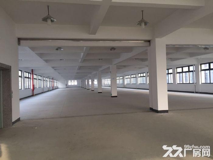 车墩标准厂房700平104板块厂证齐全大车进出方便-图(1)