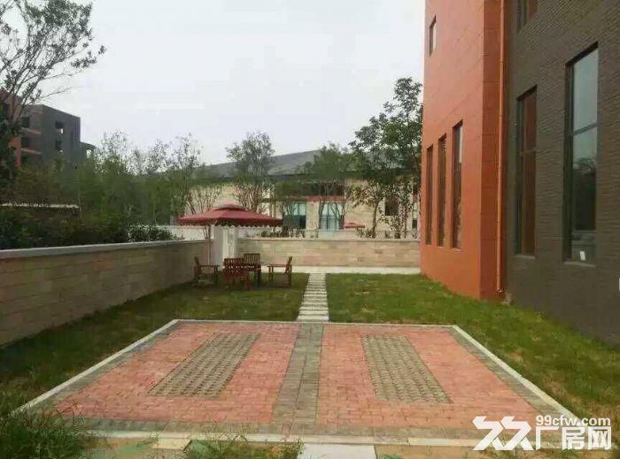 航空港工业园1900平米出售独院自带精装办公室xc-图(3)