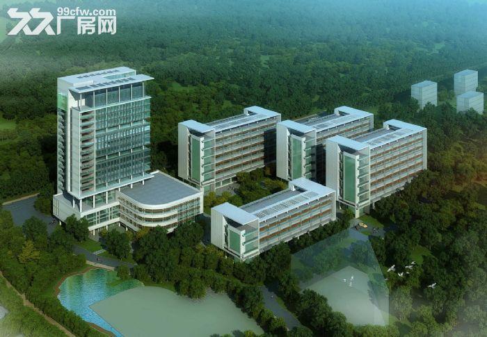 南宁高新区有标准厂房、写字楼出租售(可分割)sdf-图(2)