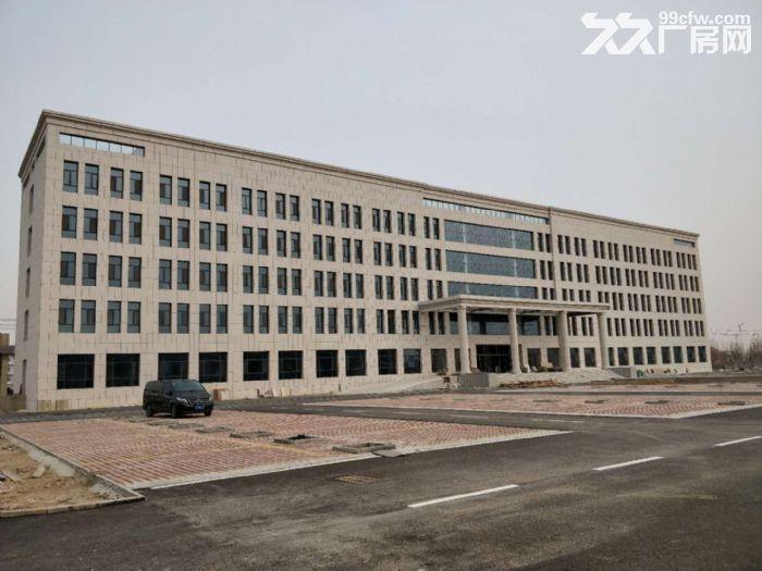 沧州开发区厂房仓库出租4000−8000平18631765218-图(3)