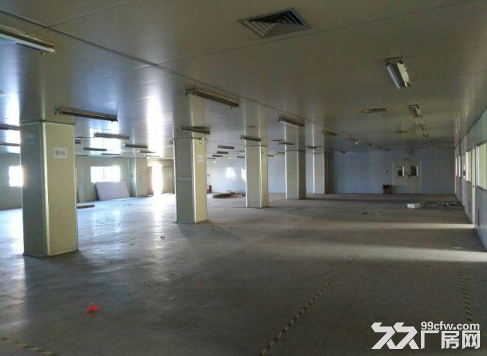 火炬东利独院5200平位置佳厂房招租-图(3)
