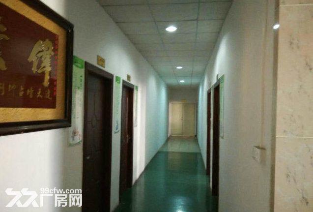 火炬东利市场附近钢构2200平水电齐全厂房招租-图(2)