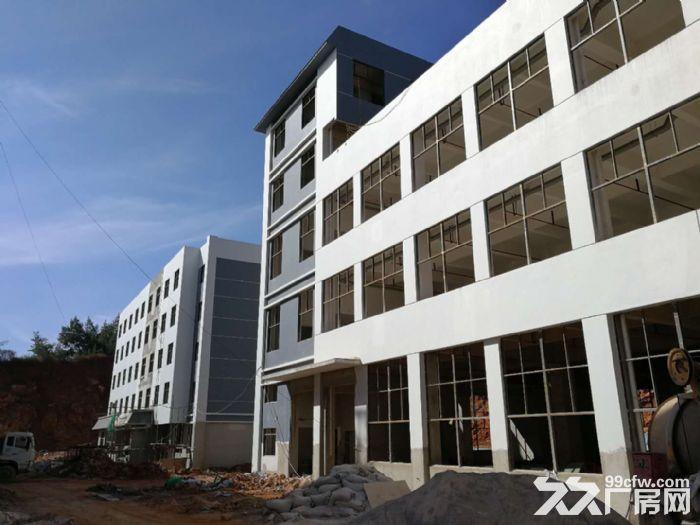全新标准化厂房仓库出租,产权齐全,可分租-图(2)