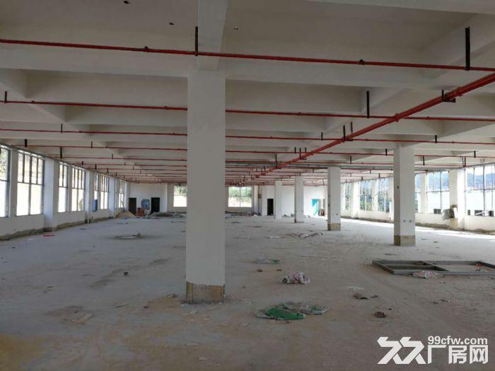 全新标准化厂房仓库出租,产权齐全,可分租-图(3)