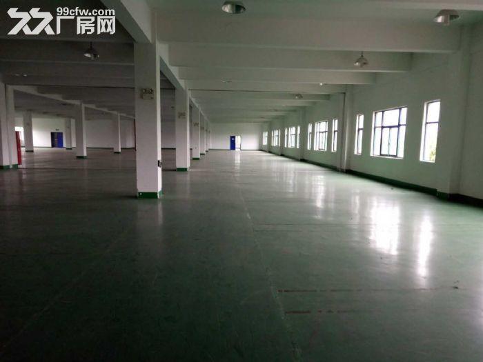 免中介!苏州新区一幢6000平米好地段厂房出租-图(1)