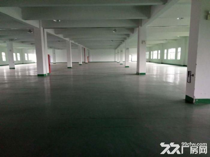 免中介!苏州新区一幢6000平米好地段厂房出租-图(2)