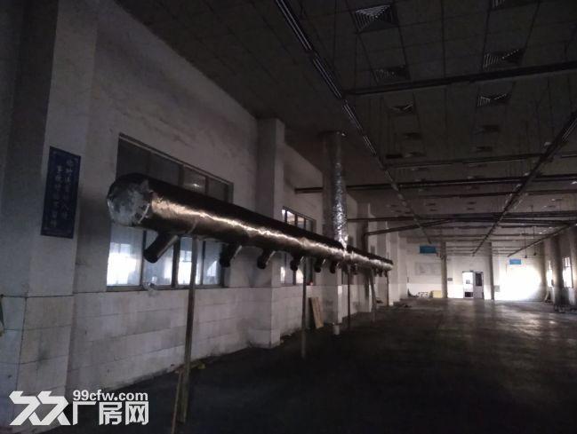滨湖区马山工业园12000平米独门独院厂房出租-图(5)