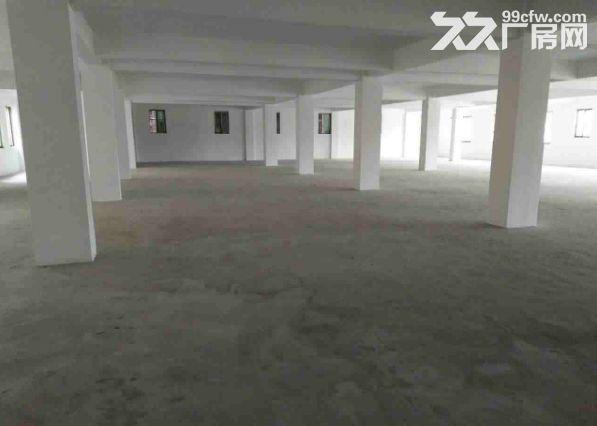 小榄埒西一标准独院厂房3500平方出租空地超大-图(4)