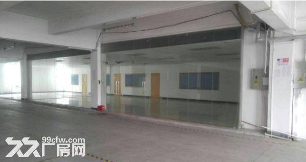 小榄绩西标准独院厂房5600平方米带装修-图(2)