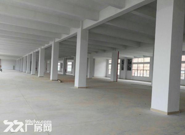 小榄绩西标准独院厂房5600平方米带装修-图(4)
