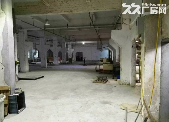 东升高沙社区经典小独院厂房2800平方出租-图(3)