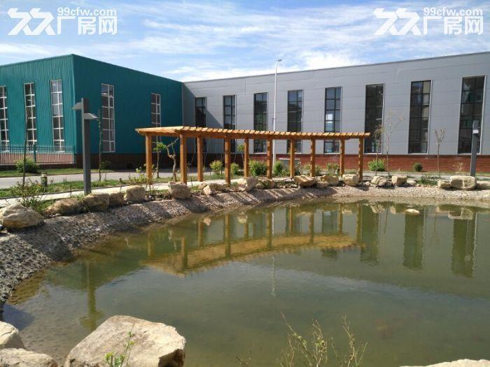 现有永宁区全新厂房租或售,首年免租金-图(6)