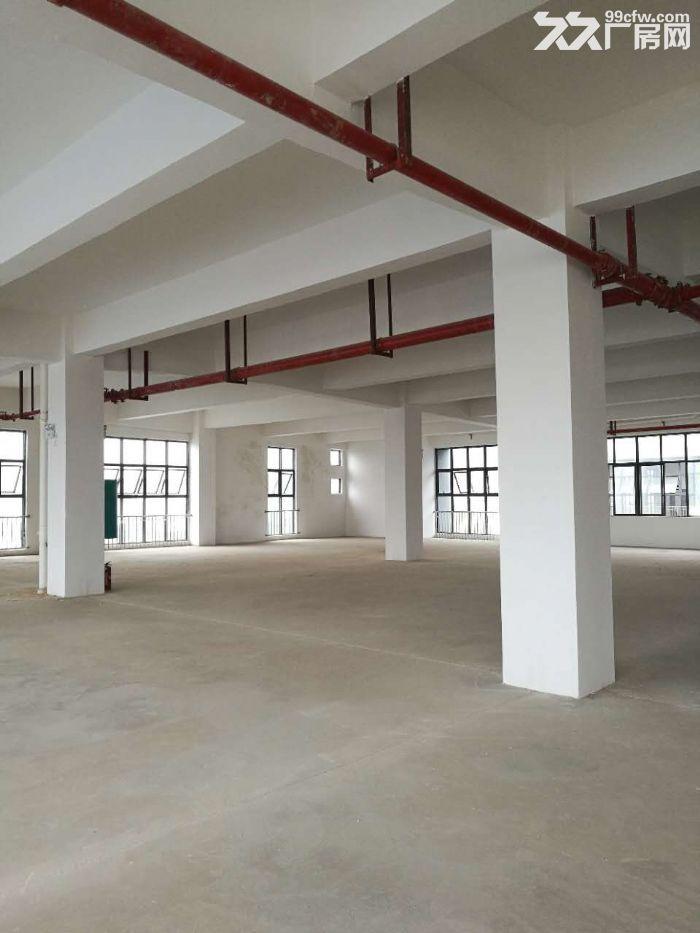 (50年独立产权)(3字头)现代标准厂房层高4.5米面积1600平-图(1)
