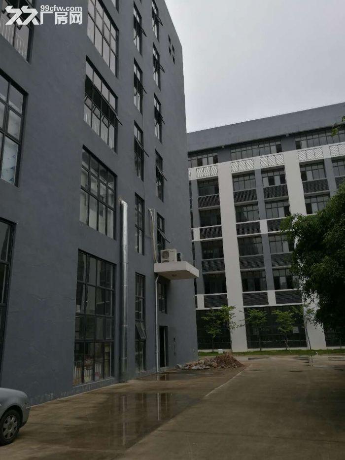(50年独立产权)(3字头)现代标准厂房层高4.5米面积1600平-图(5)