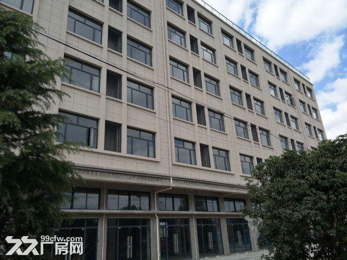 浦东自贸区厂房出租10000−−−55000平方出租租金1.1−−1.6元-图(1)